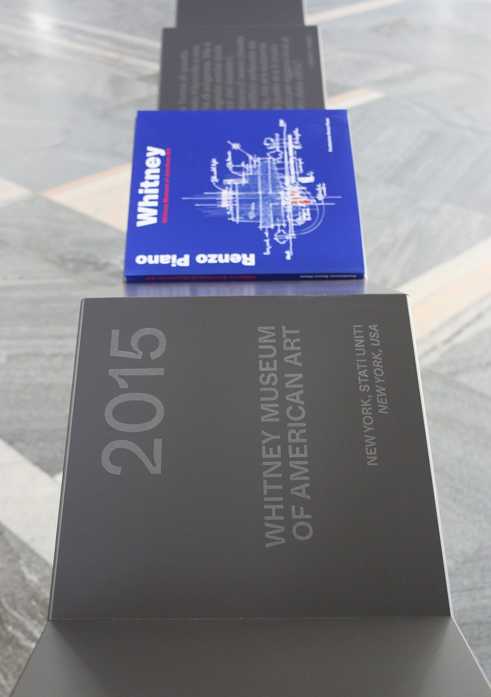 Puricelli_Folded line_Anna Merci per l'Archivio della Fondazione Renzo Piano (1).jpg
