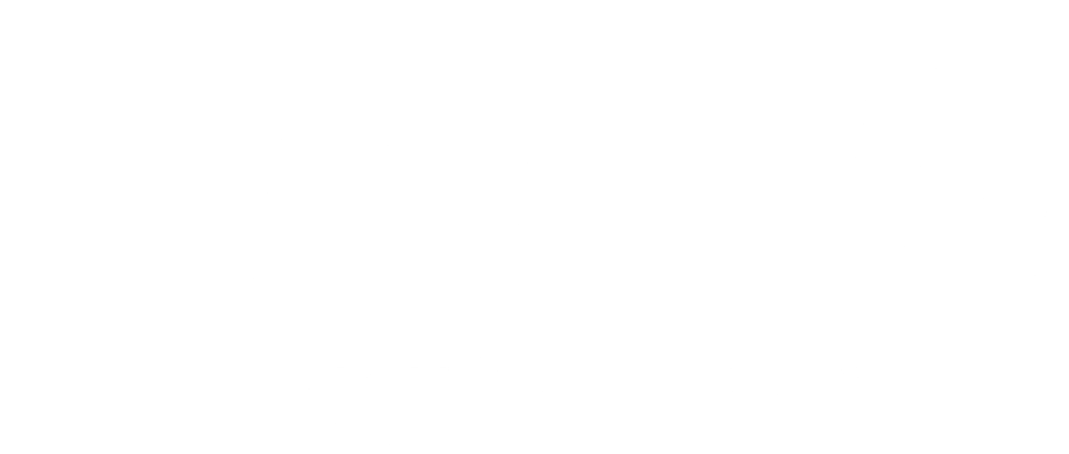 Dash Digital Cash Logo White.png