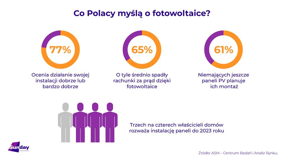Sunday_badania_infografika.png