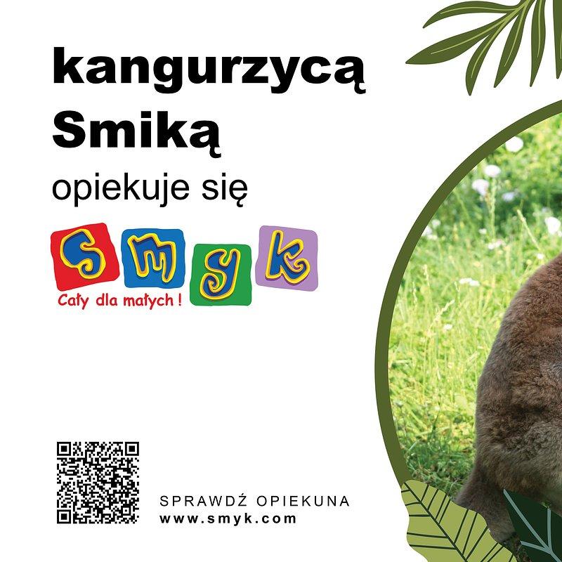 75x50-zoo-kangur.jpg
