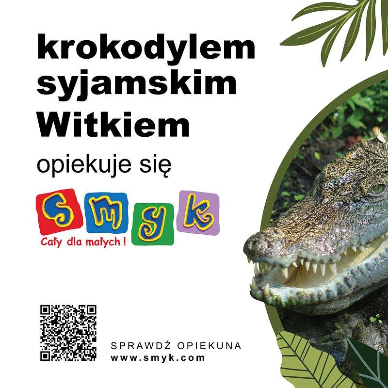 75x50-zoo-krokodyl.jpg