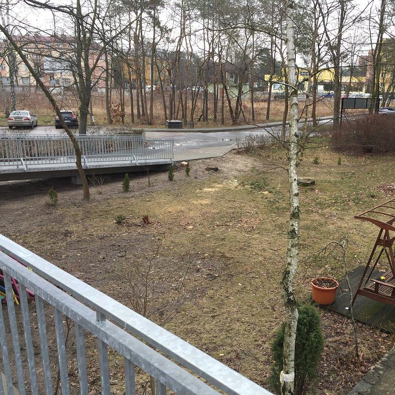 ogród przed remontem.JPG