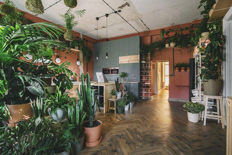 IKEA_Dom_Jutra_kroniki_studio_25_2000.jpg