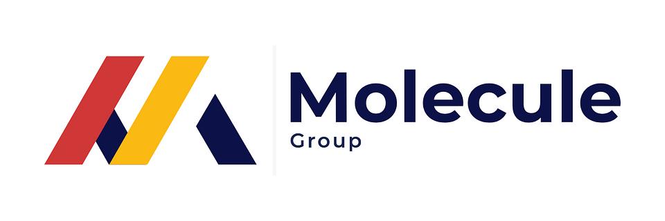 New Molecule Group logo after rebranding