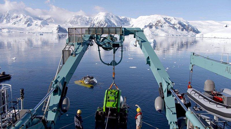 Podwodny świat Antarktydy 2.jpg