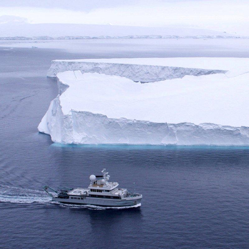 Podwodny świat Antarktydy 3.jpg
