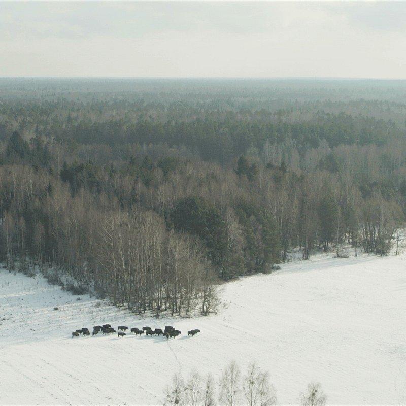 Europa z powietrza - Polska 16.jpeg
