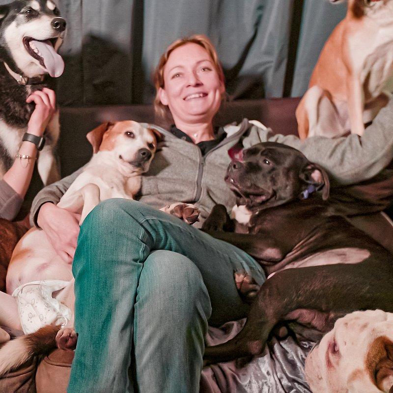 106 psów w moim dmu 3.jpg