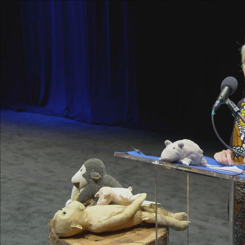 Jane Goodall Nadzieja na przyszłość 1.JPG