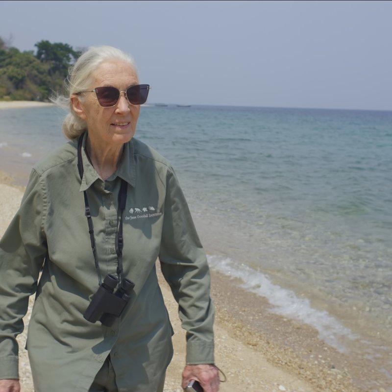 Jane Goodall Nadzieja na przyszłość 5.JPG