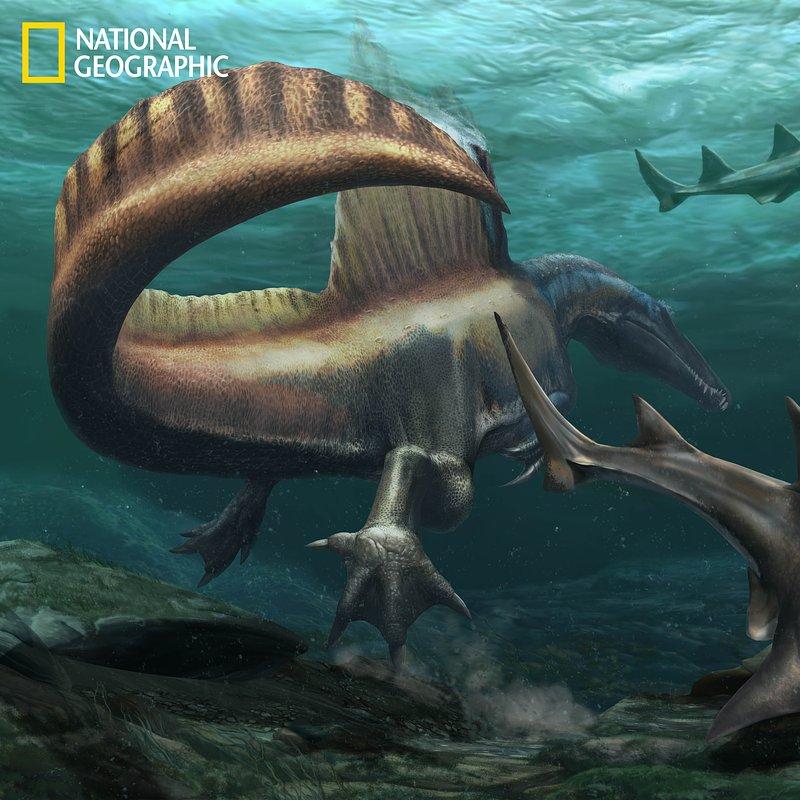 3. Spinosaurus_Onchopristis 20191021[1].jpg