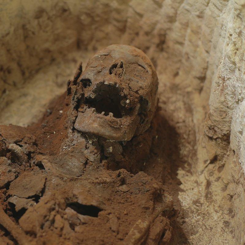 Tajemnicze mumie z Sakkary 6.JPG