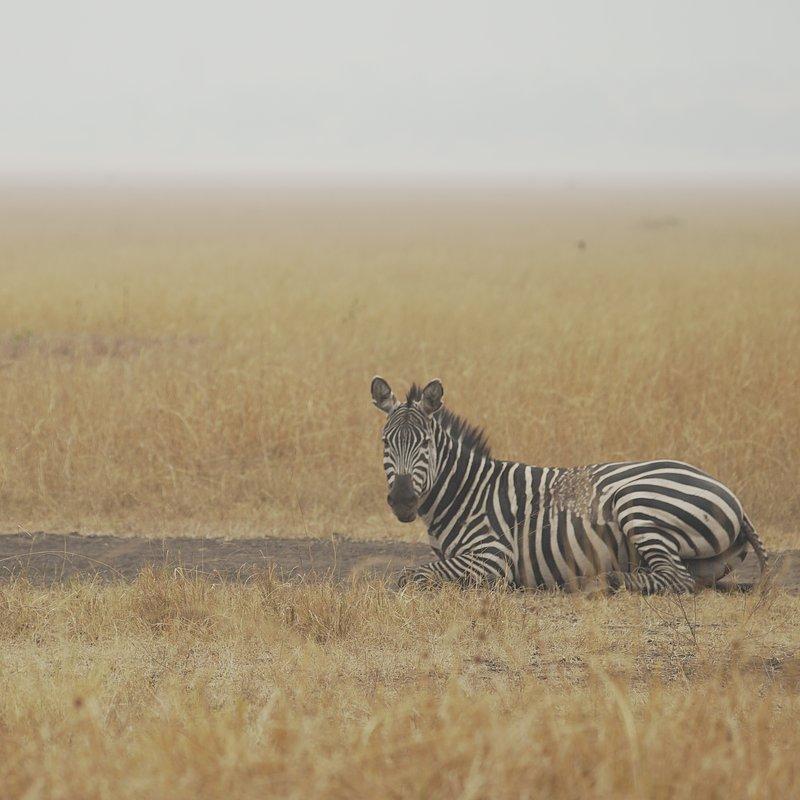 Cuda Afryki - Rwanda (2).jpg