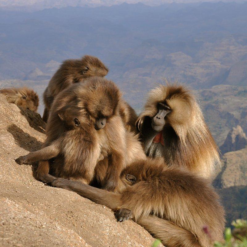 Cuda Afryki - Etiopia (4).jpg