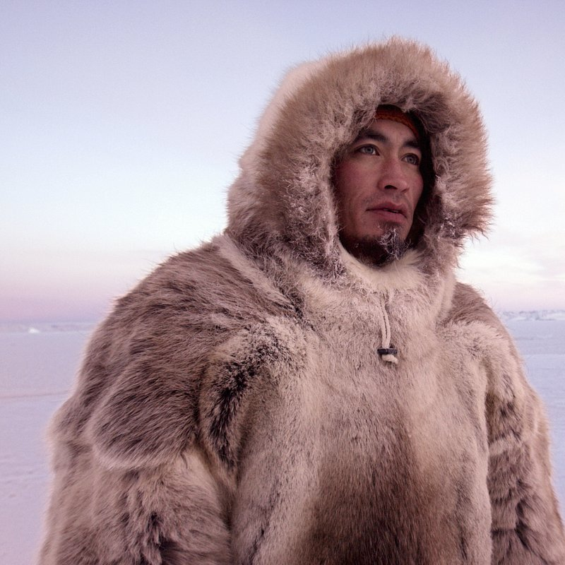 TheLastIce_Na ratunek Arktyce 3.jpg