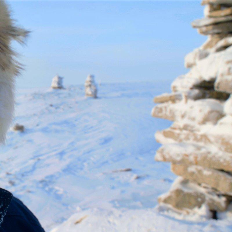 TheLastIce_Na ratunek Arktyce 5.jpg