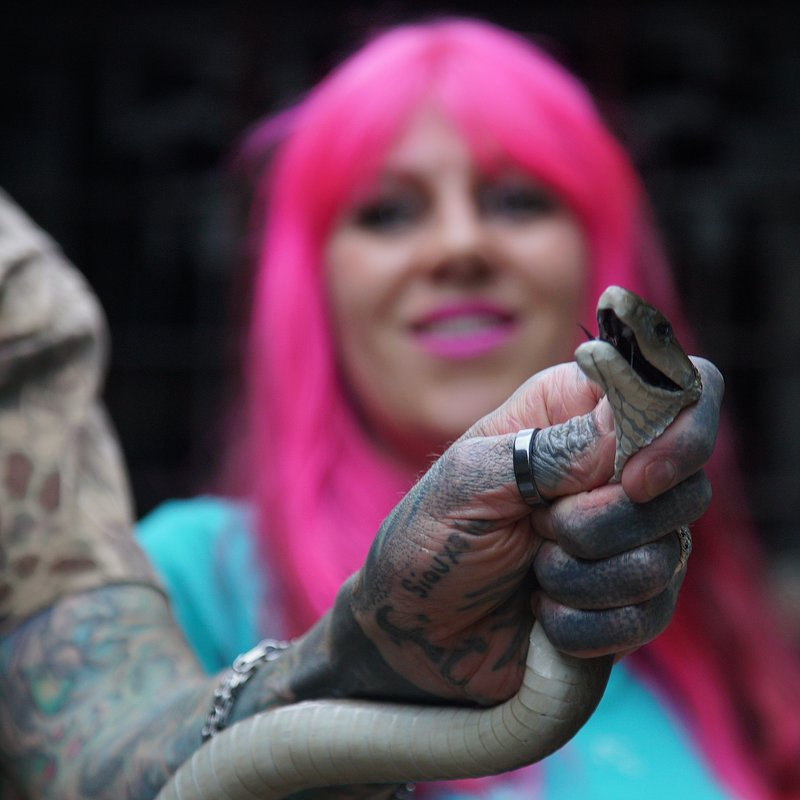 SnakesInTheCity_National Geographic Wild (7).jpg