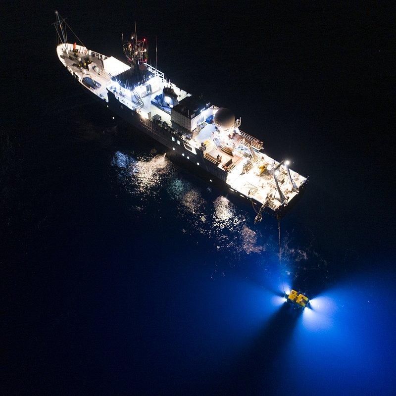 W poszukiwaniu Amelii_National Geographic (3).jpg
