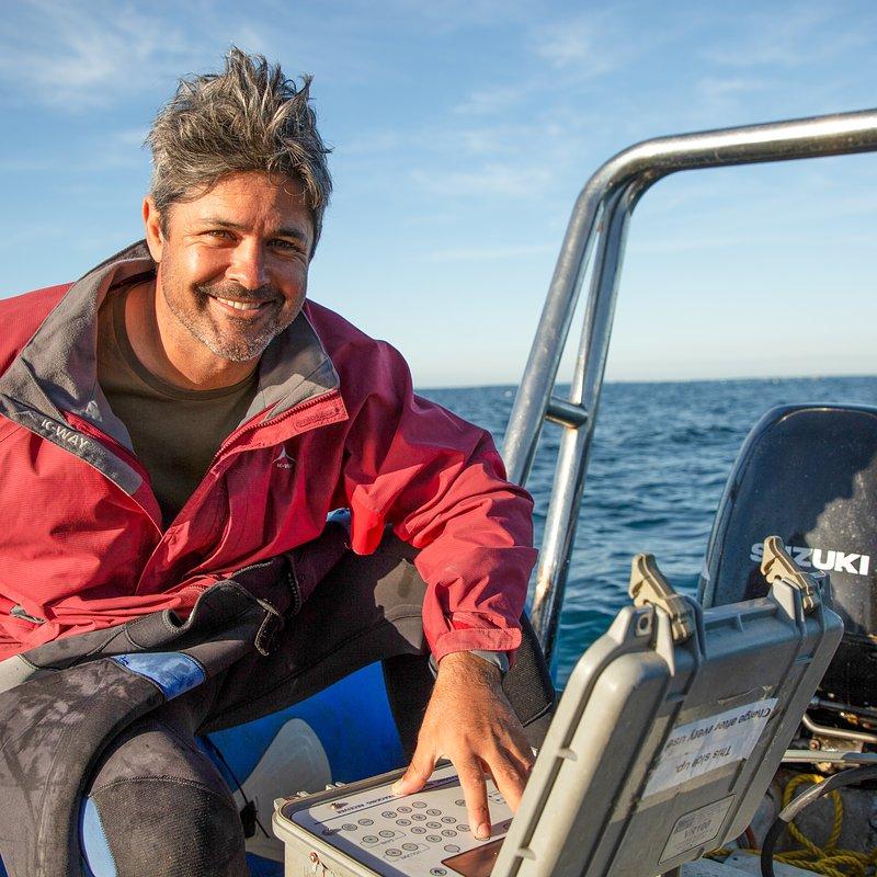 Rekin kontra waleń_National Geographic Wild (1).jpg