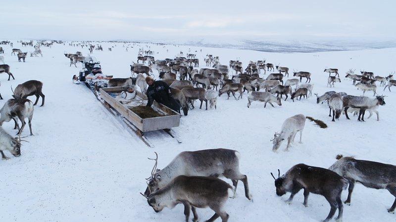 Finlandia_Europa z powietrza_National Geographic (6).jpg