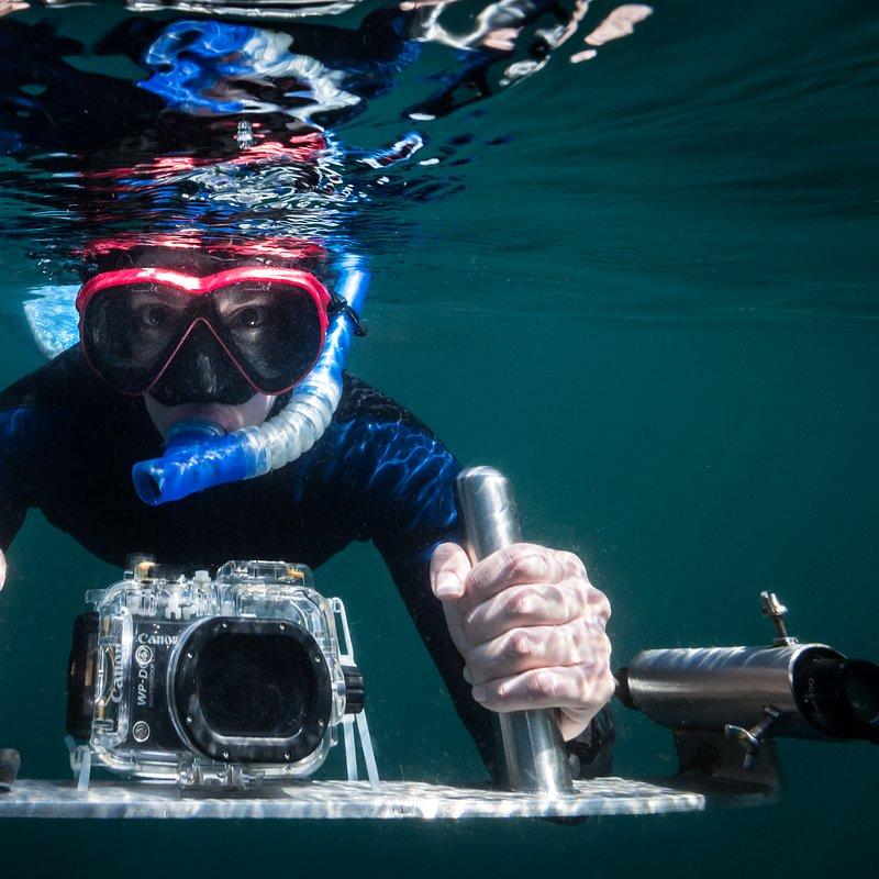 Strażnicy oceanów w National Geographic_Kerstin Forsberg (2).tif