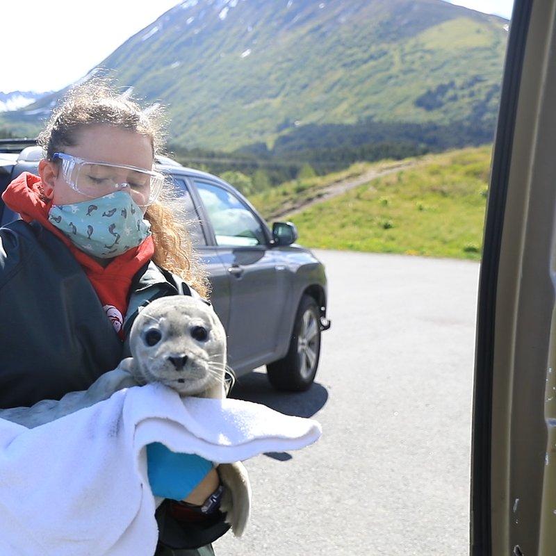 Ratownicy z Alaski_National Geographic Wild 6.jpg