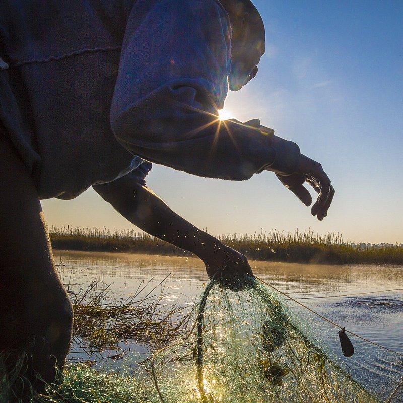 Delta rzeki Okavango 7.jpg