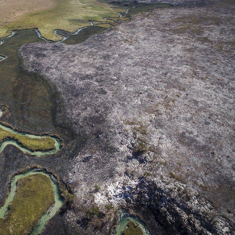 Delta rzeki Okavango 3.jpg