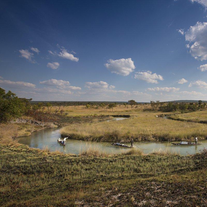 Delta rzeki Okavango 4.jpg