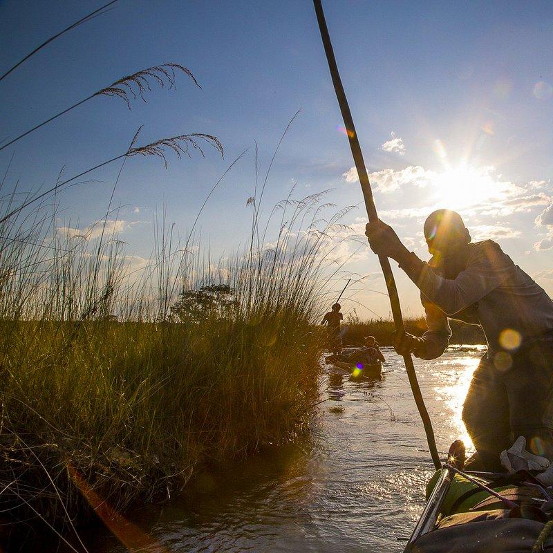 Delta rzeki Okavango 5.jpg