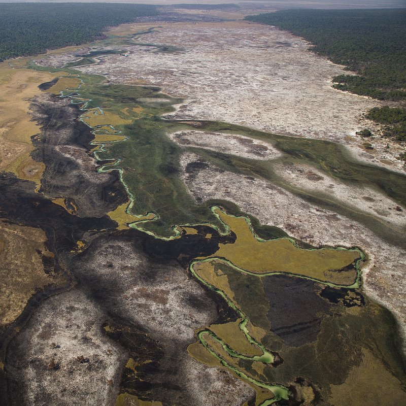 Delta rzeki Okavango 6.jpg