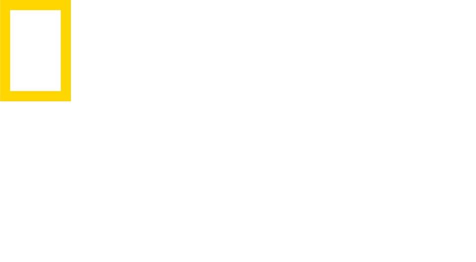 NGWILD_LogoFull_white_CMYK.jpg