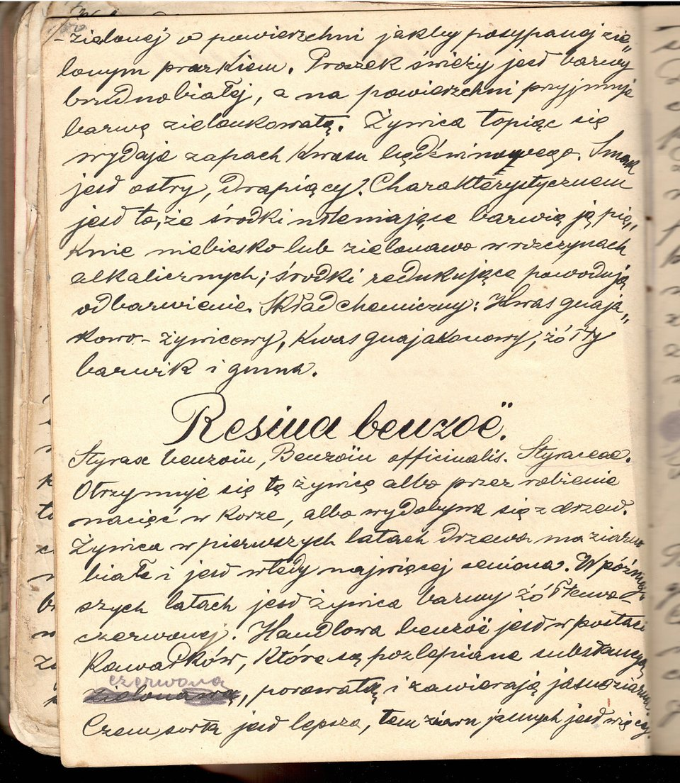 Opis żywicy benzoesowej w zeszycie ćwiczeniowym studenta farmacji z 1901 roku. Ze zbiorów autorów