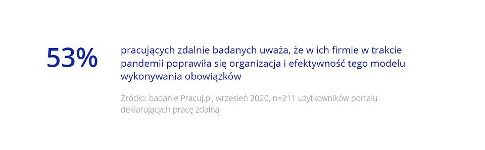 Raport_Pół roku nowej normalności_25.png