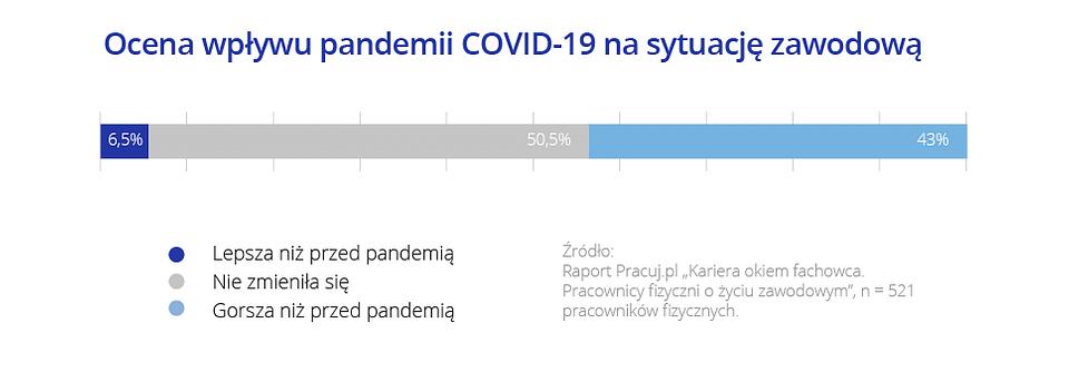 Ocena wpływu pandemii COVID-19 na sytuację zawodową.png