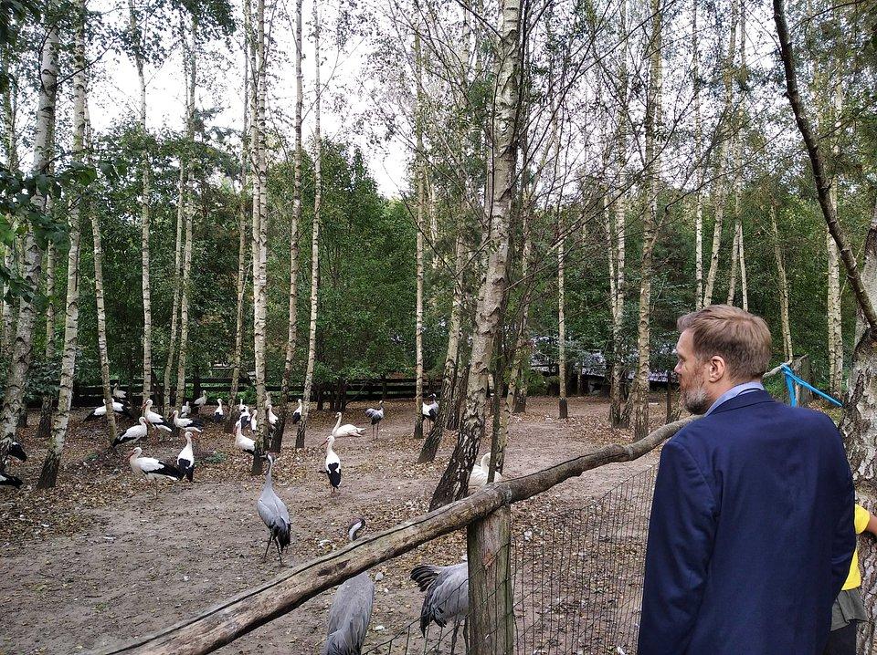 Ośrodek Rehabilitacji Dzikich Ptaków
