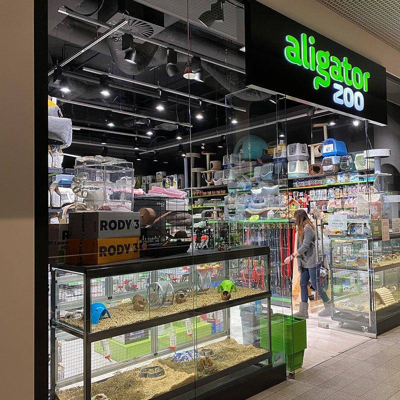 Aligator 2.jpg