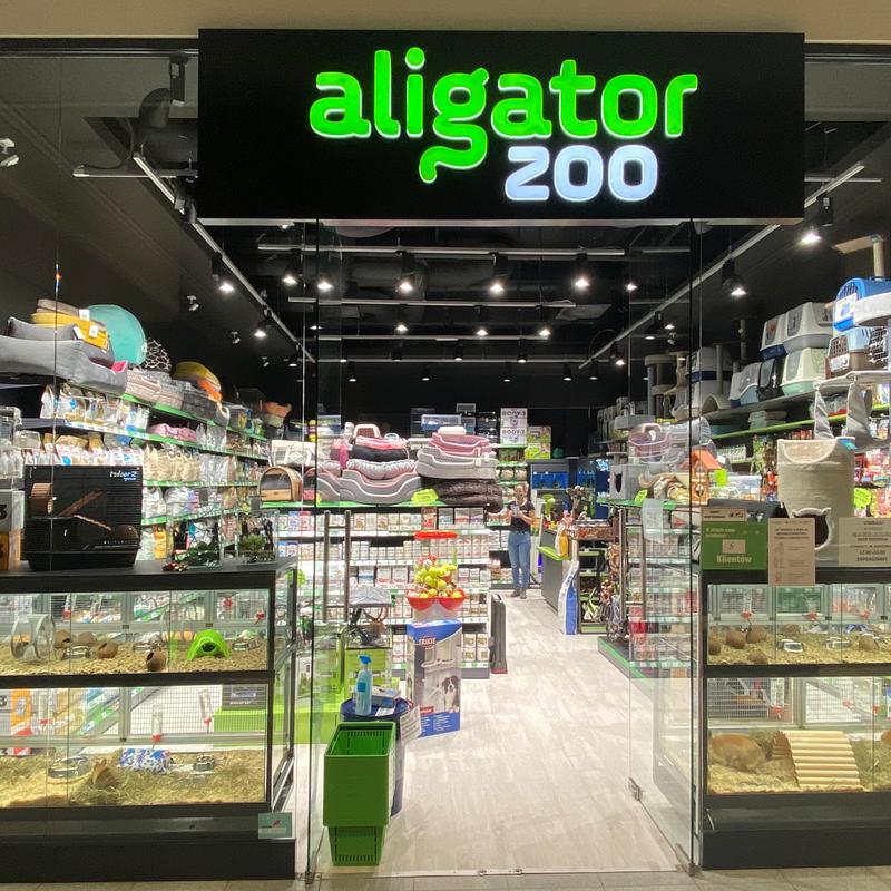 Aligator 1.png