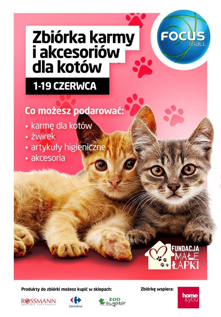 Zbiórka karmy i akcesoriów dla kotów.jpg