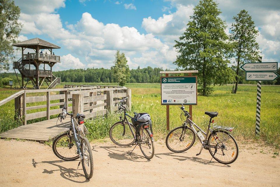Rowery to jedna z najlepszych form poruszania się po terenach Białowieskiego Parku Narodowego