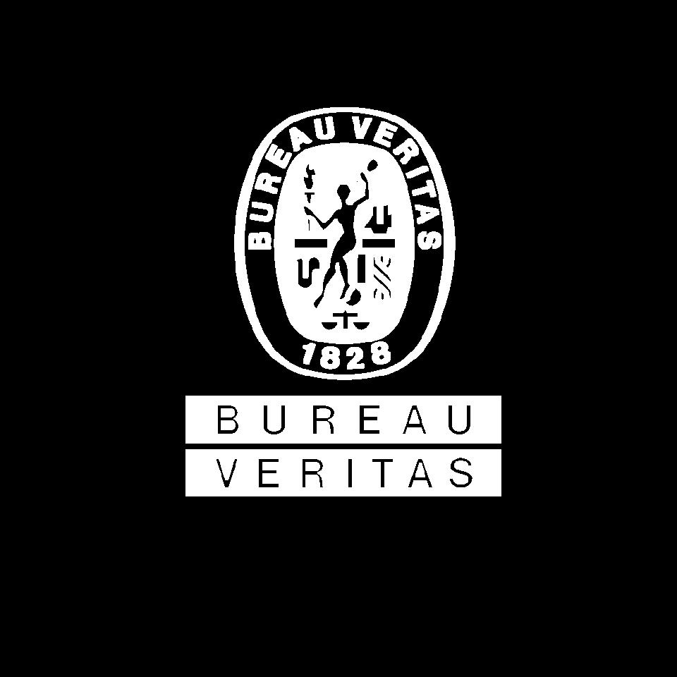 Logo BIAŁE -BV.png