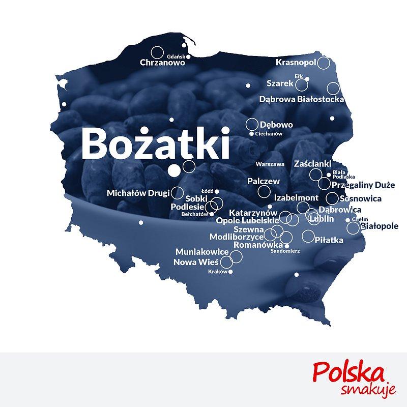 mapa-jagoda-kamczacka_BOŻATKI.jpg