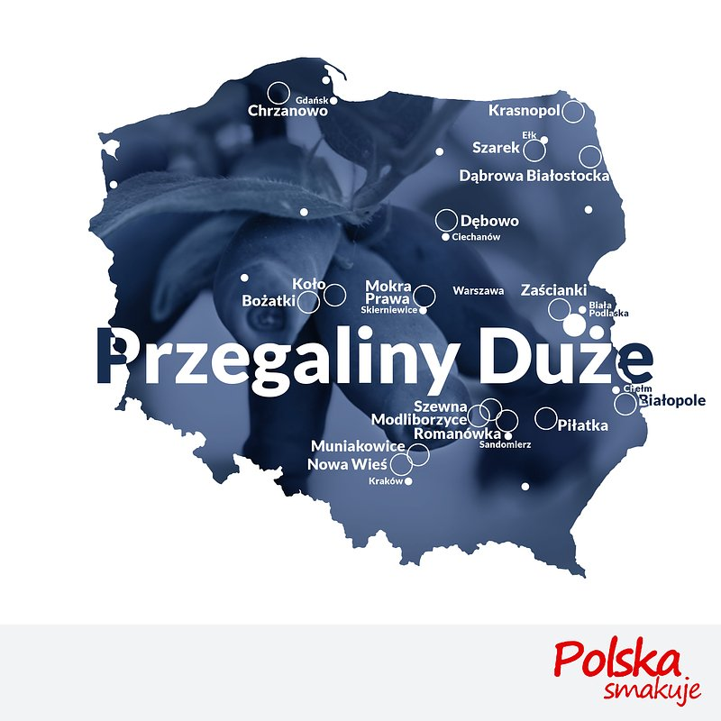 mapa-jagoda-kamczacka_PRZEGALINY-DUŻE.jpg
