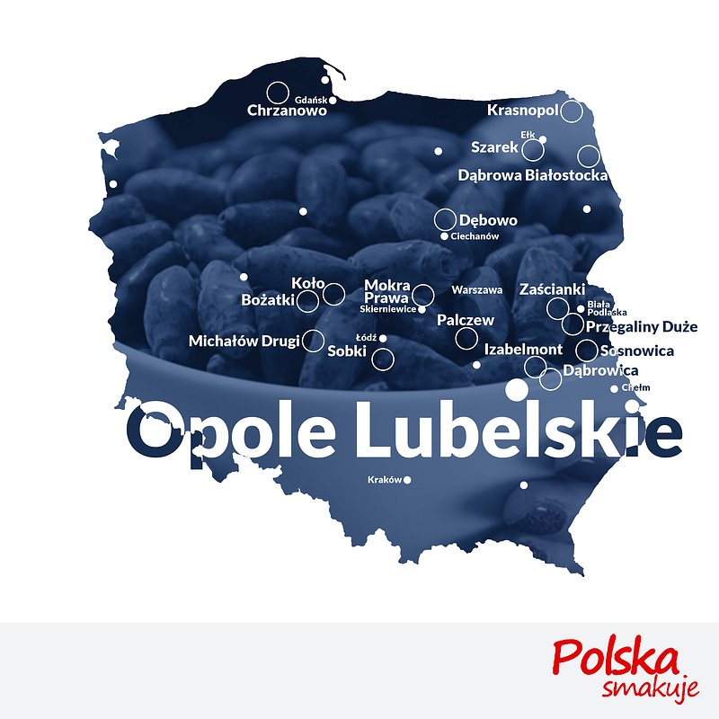 mapa-jagoda-kamczacka_OPOLE-LUBELSKIE.jpg