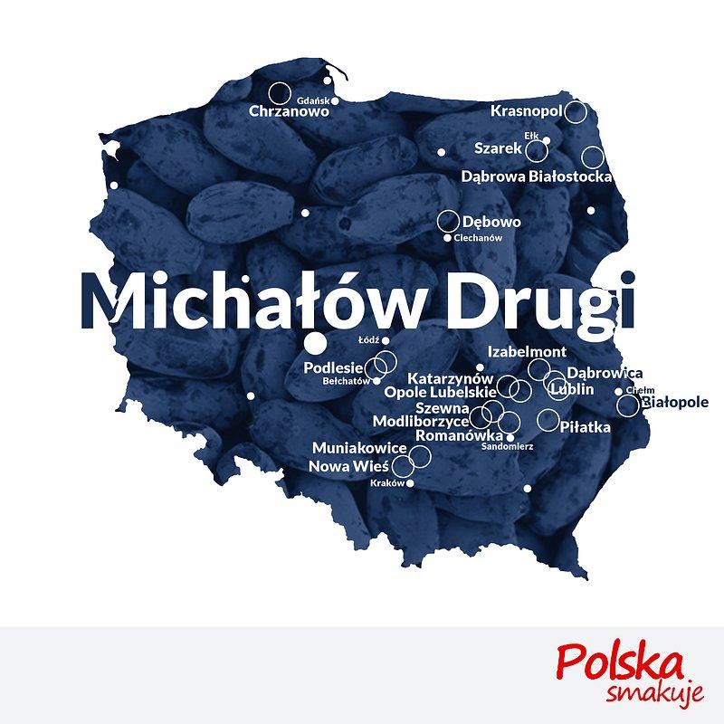 mapa-jagoda-kamczacka_MICHAŁÓW-DRUGI.jpg