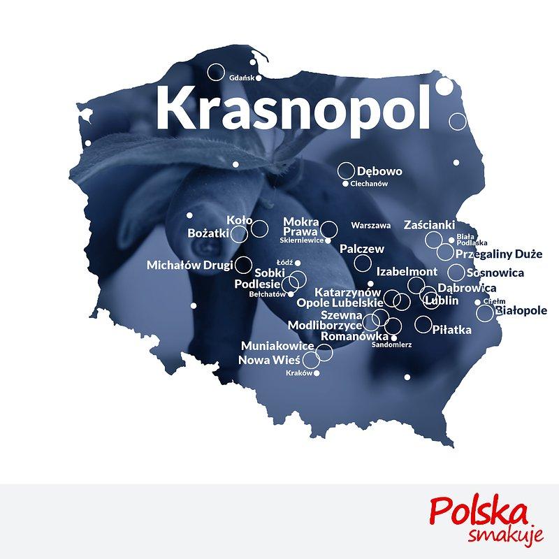 mapa-jagoda-kamczacka_KRASNOPOL.jpg