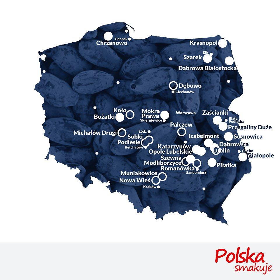 mapa-jagoda-kamczacka_mapa_terminy finał 27.jpg