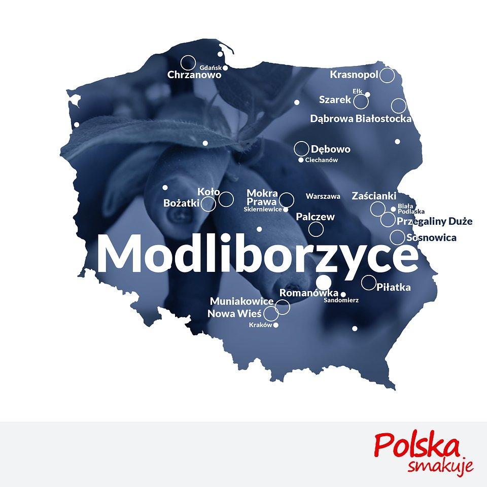 mapa-jagoda-kamczacka_MODLIBORZYCE.jpg