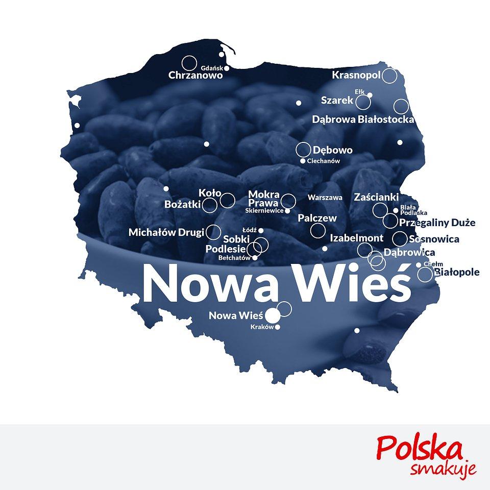 mapa-jagoda-kamczacka_NOWA-WIEŚ.jpg