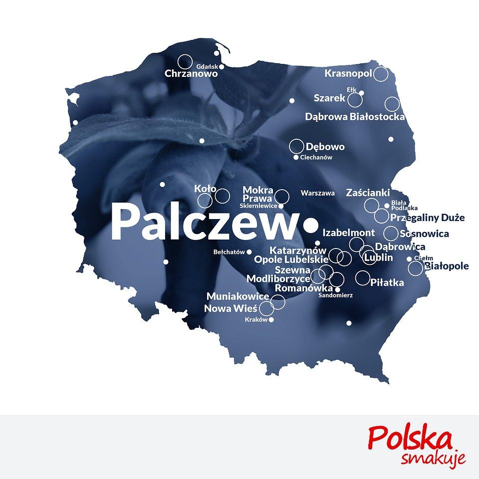 mapa-jagoda-kamczacka_PALCZEW.jpg